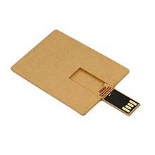 USB CARPINUS